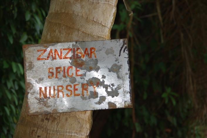 Zanzibar spice nursery